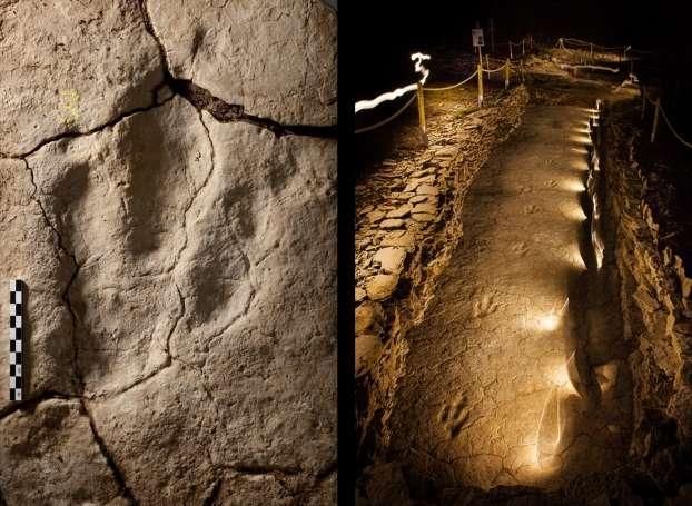 Des scientifiques français ont récemment découvert la première piste de dinosaure sauropode dans une grotte karstique du sud de la France. Une grotte karstique est l'un des types de grottes les plus courants, formée à partir de calcaire.